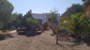 Yalıkavak Merkeze 1500 Mt 2200 M2 Arsa İçinde Tek Katlı Villa